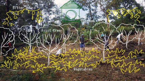 里山フルーツガーデン01のコピー.jpg
